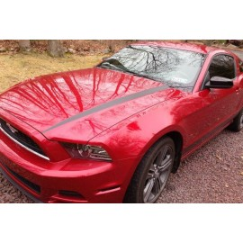 Hood Line Accents (2013-2014 Mustang V6)