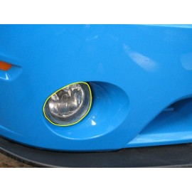 Paint Protection - Fog Lights (2007-2014 Mustang GT500)