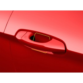 Paint Protection - Door Edge & Handle Kit (2015-2017 Mustang)