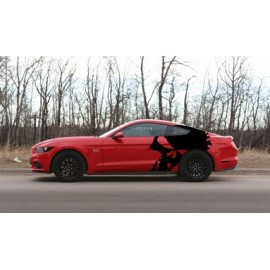 Punisher Skull Body Graphics (2015-2017 Mustang)